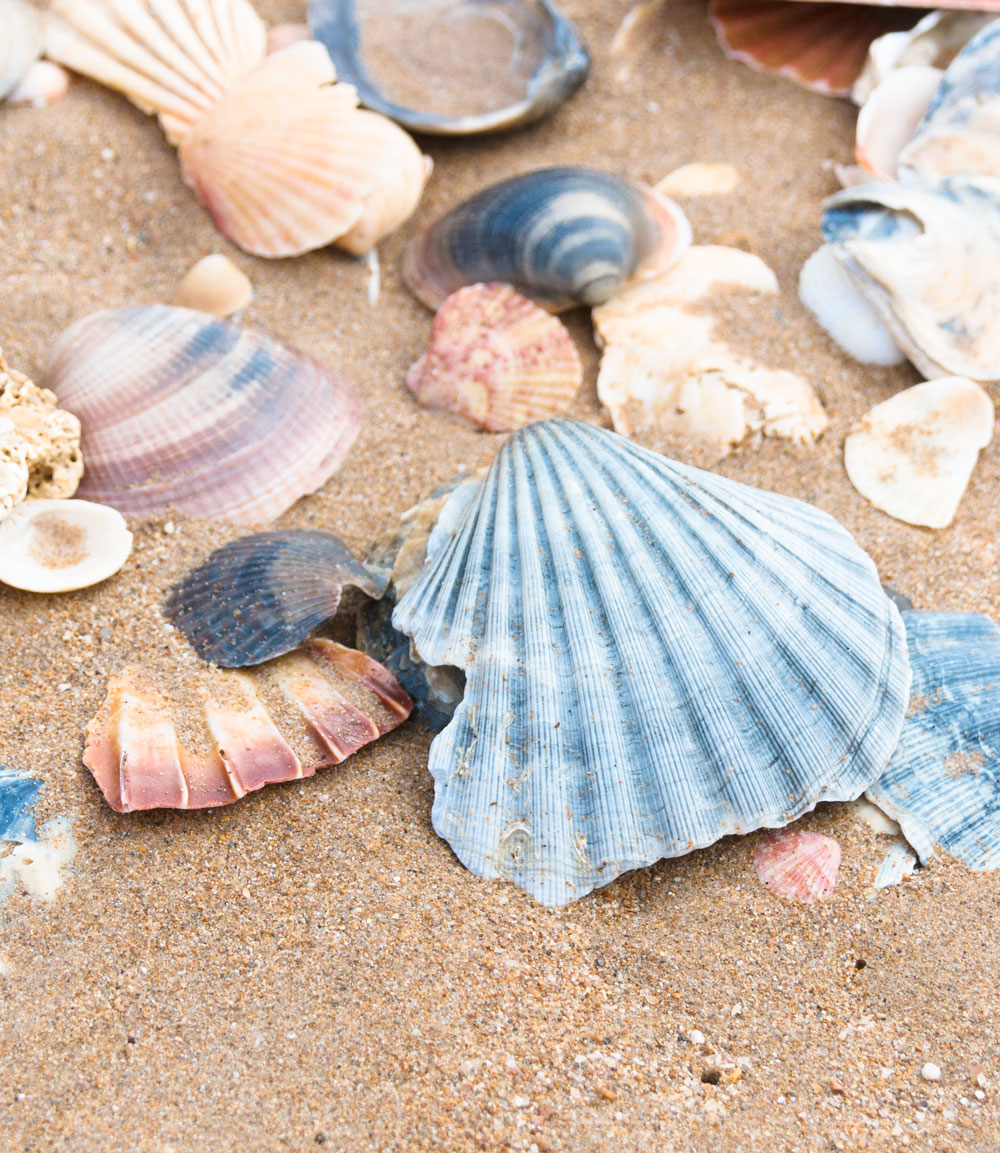 Algarve Lagos Pinhao beach smukkeste strande beautiful beaches