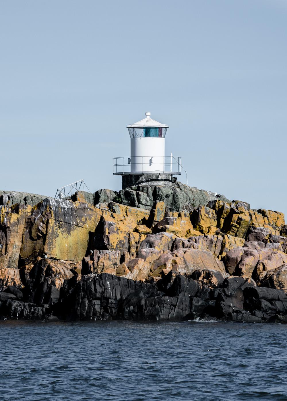 Sverige Väderö - sæler alkefugle og skærgård