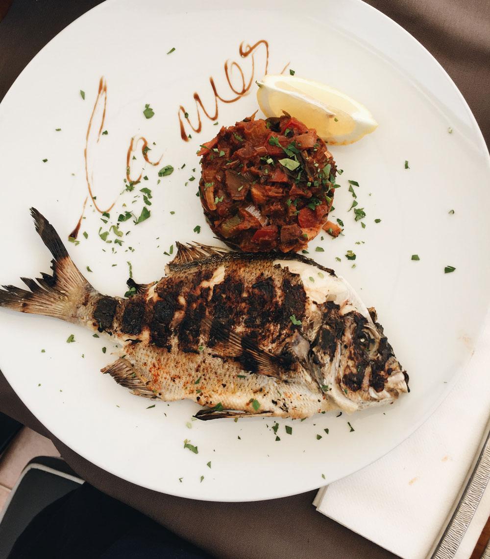 korsika fisk