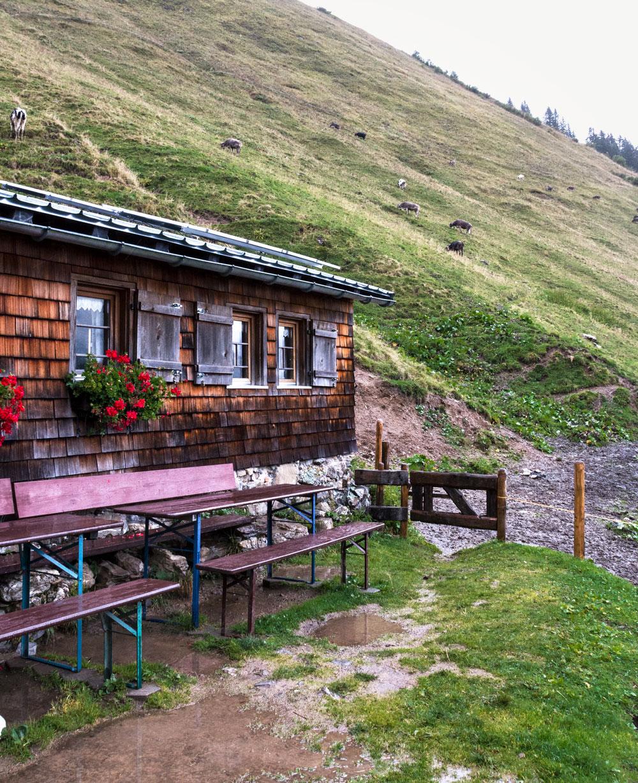 På kulinarisk vandretur til hytten Mittlere Spitalalpe i Østrig