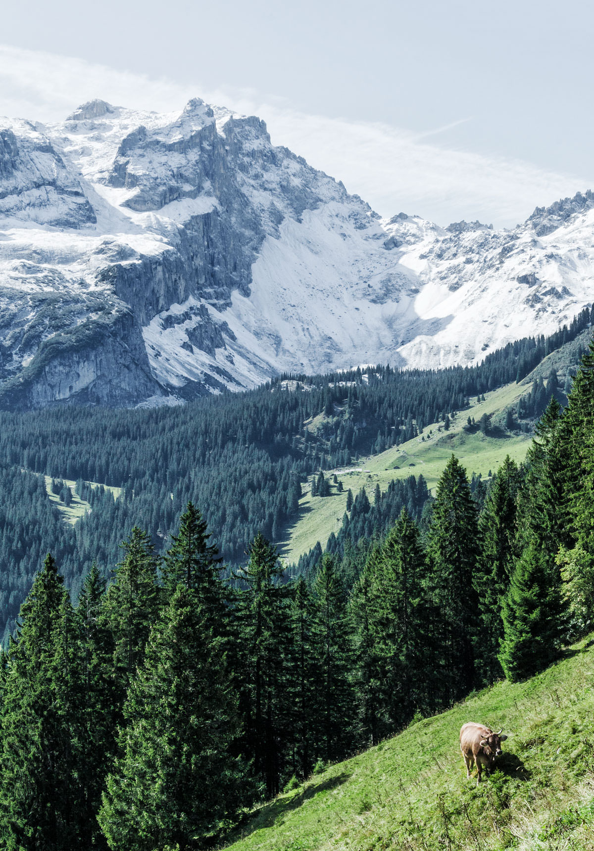 Østrig Vorarlberg / vandring i Montafon-bjergene