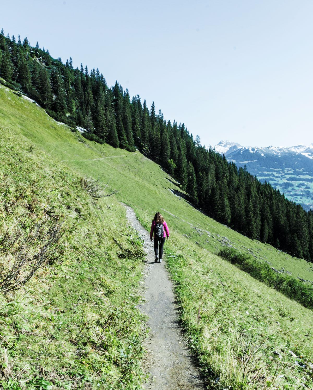 Østrig Vorarlberg / vandring i Montafon-bjergeneØstrig Vorarlberg / vandring i Montafon-bjergeneØstrig Vorarlberg / vandring i Montafon-bjergeneØstrig Vorarlberg / vandring i Montafon-bjergene