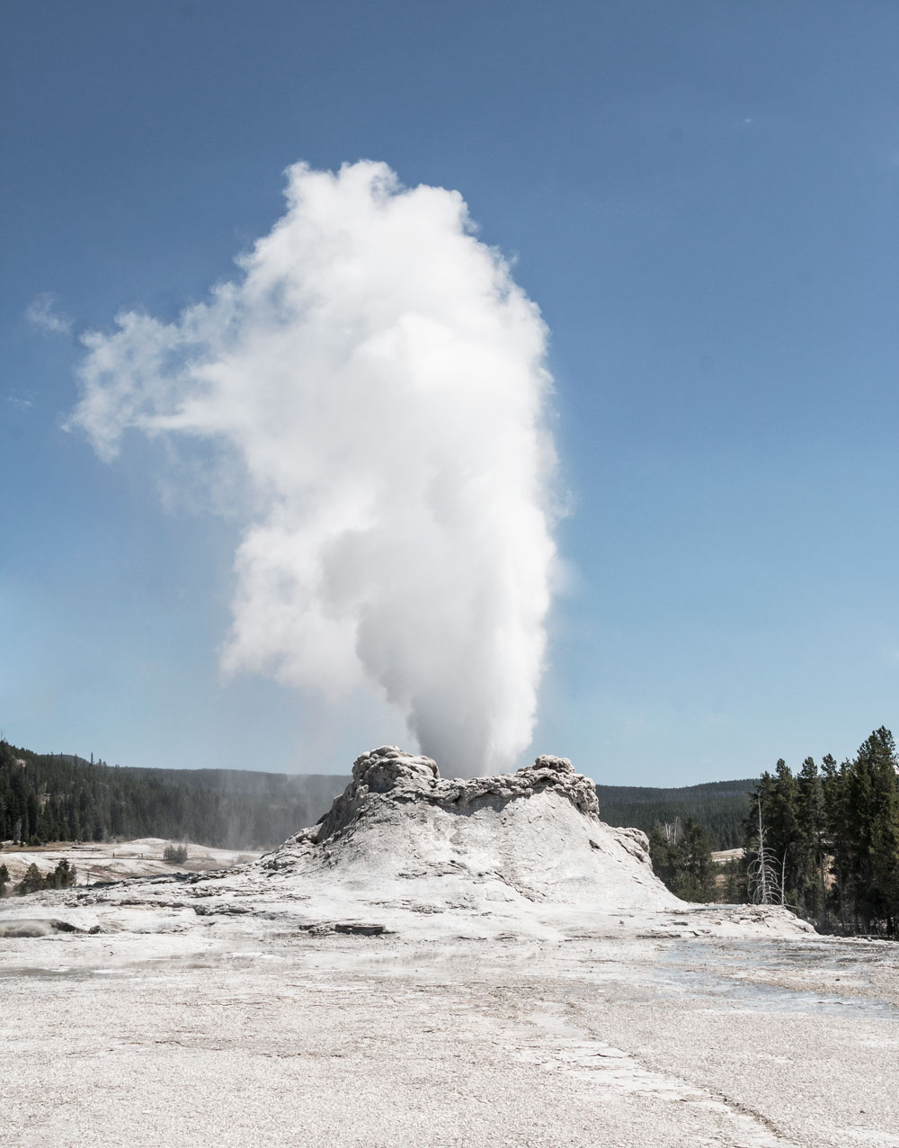 yellowstone castle geyser