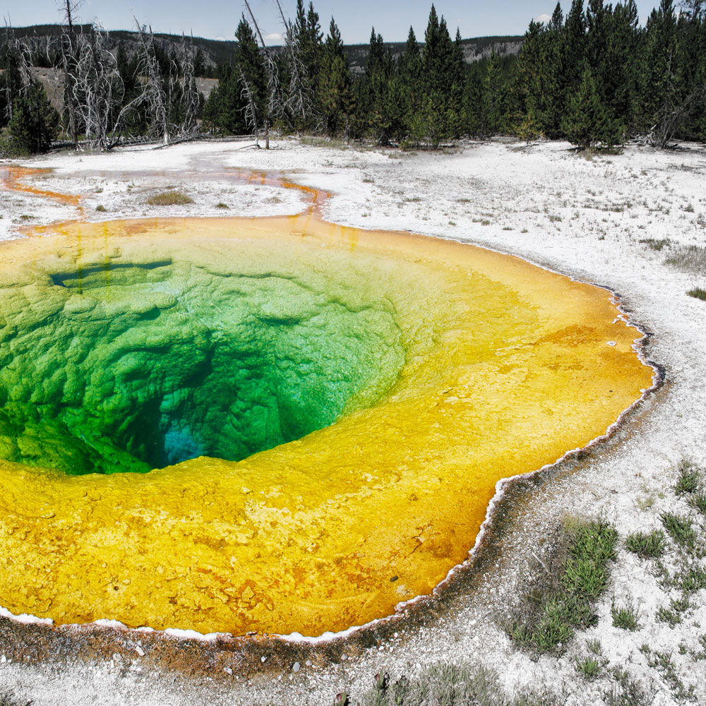 yellowstone morning glory pool