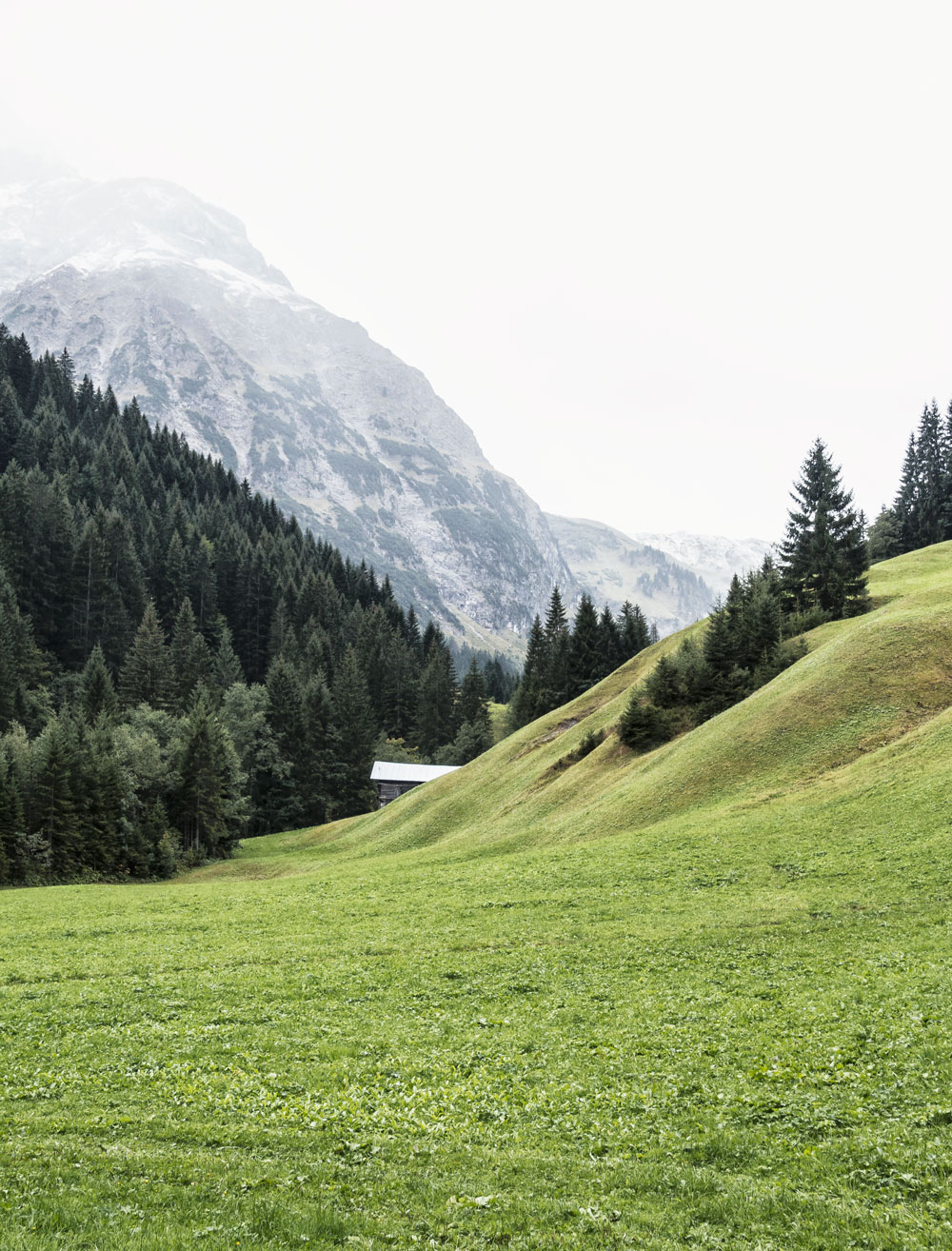 A culinary hike in the valley Kleinwalsertal in Austria