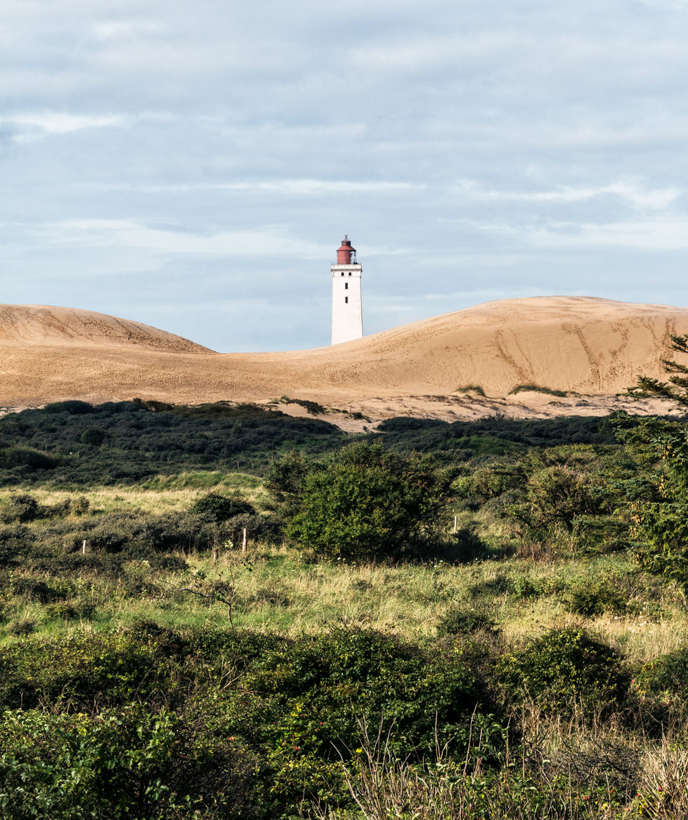 Rubjerg Knude fyr smukke naturoplevelser Nordjylland