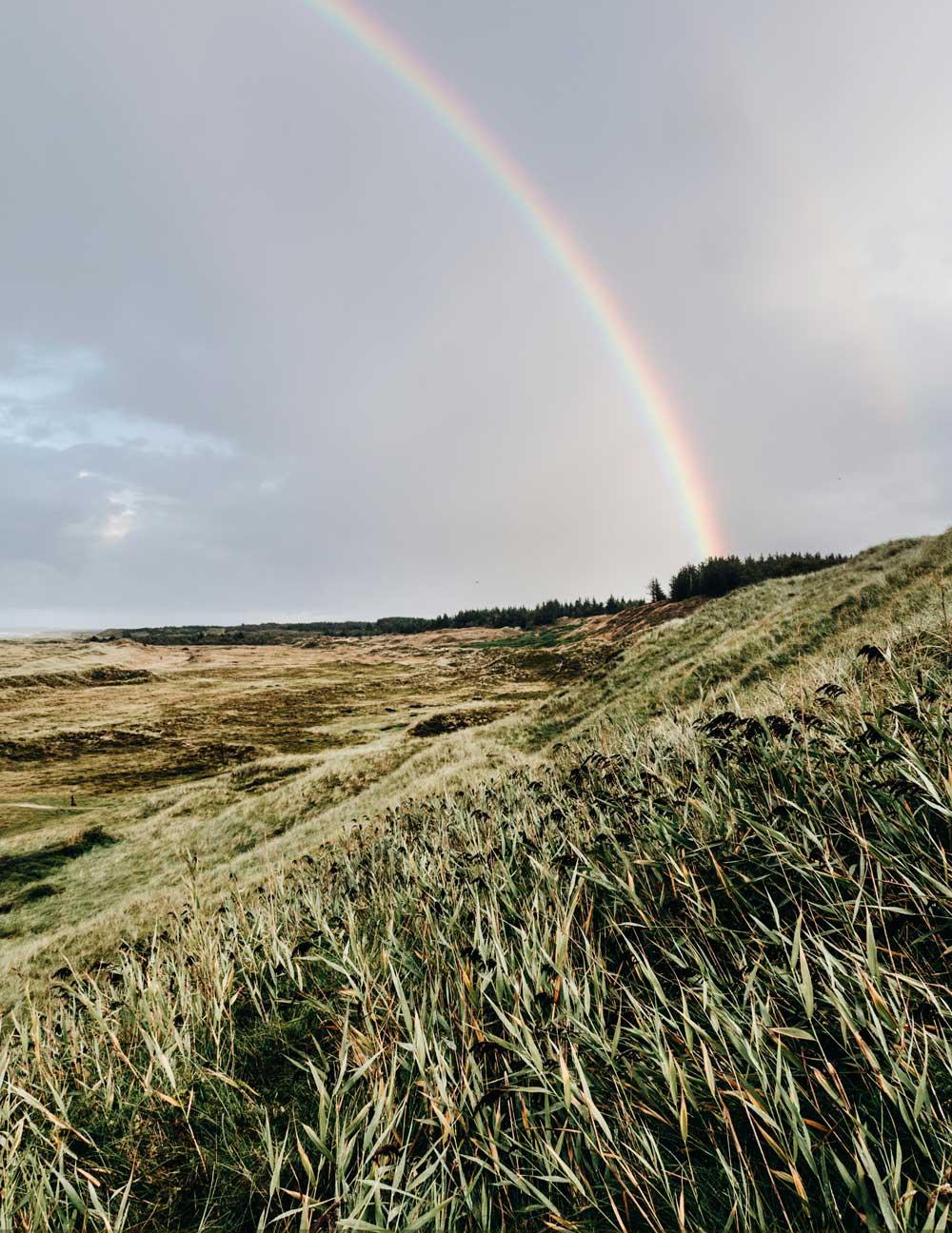 Bulbjerg - 6 smukke naturområder i Midt- og Nordjylland