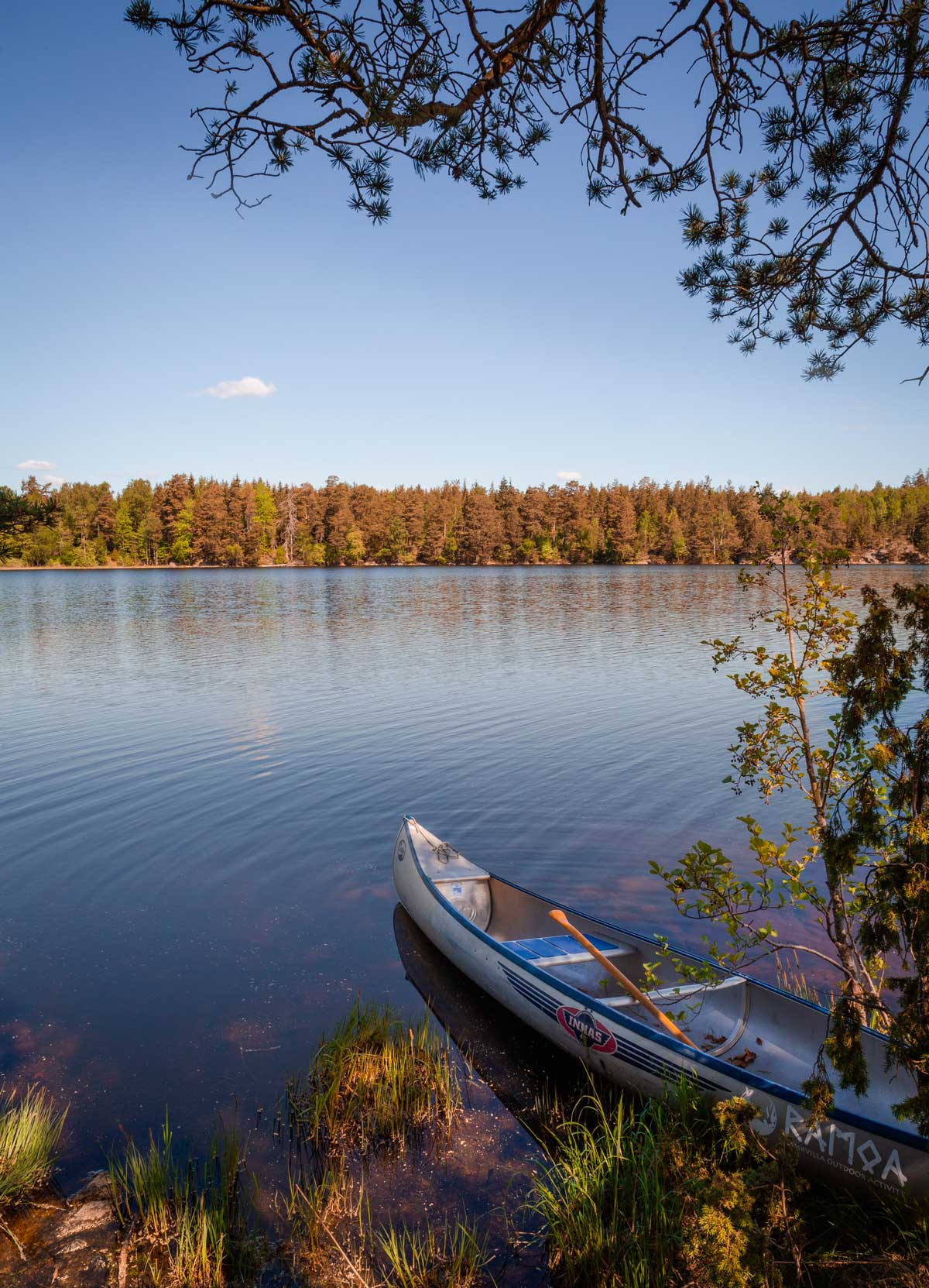 Canoe trip in Småland Sweden on our very own island