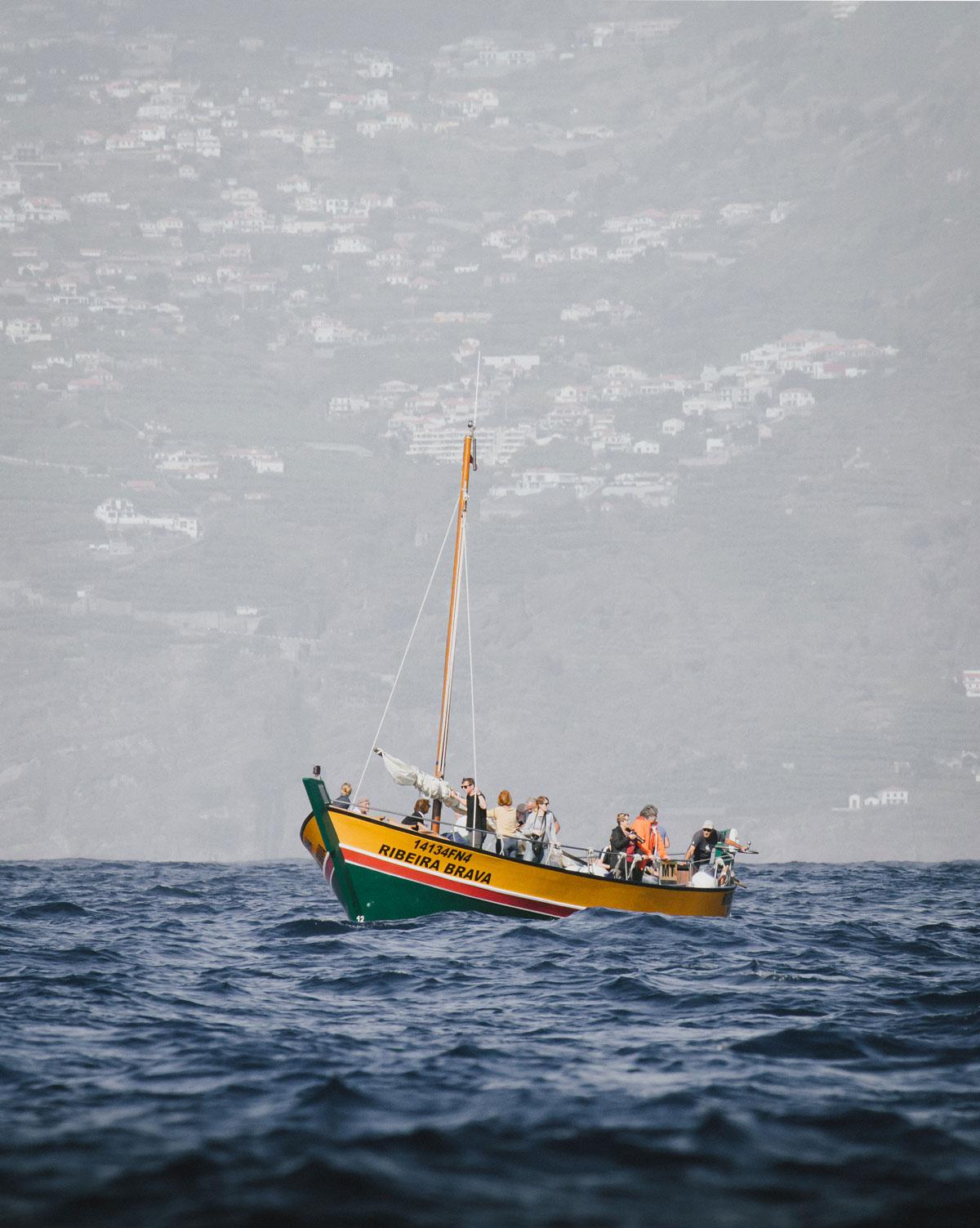 Madeira hvalsafari