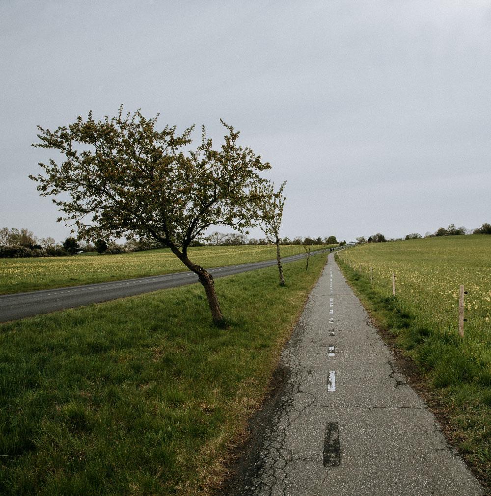 Vandretur på Sjælland: Tisvildevejen