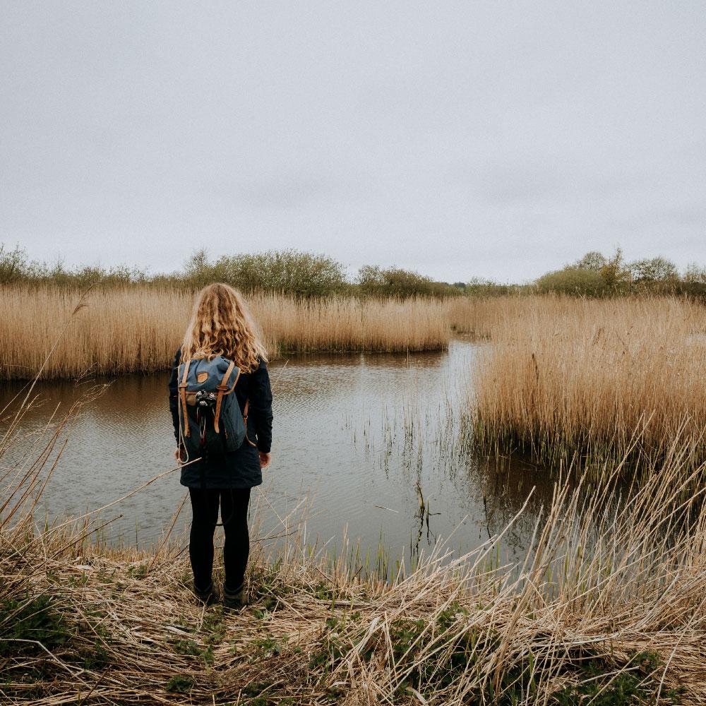 Vandretur på Sjælland: Ellemosen