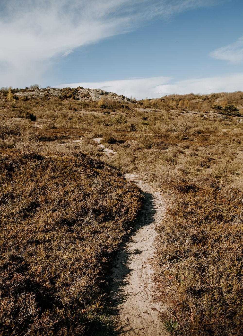 Hammerknuden - vandreture på Bornholm
