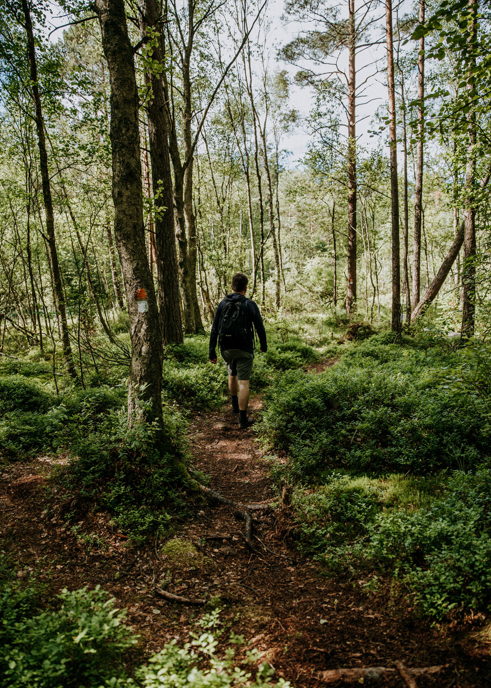 Hiking in Skåne: Hovdala nature area
