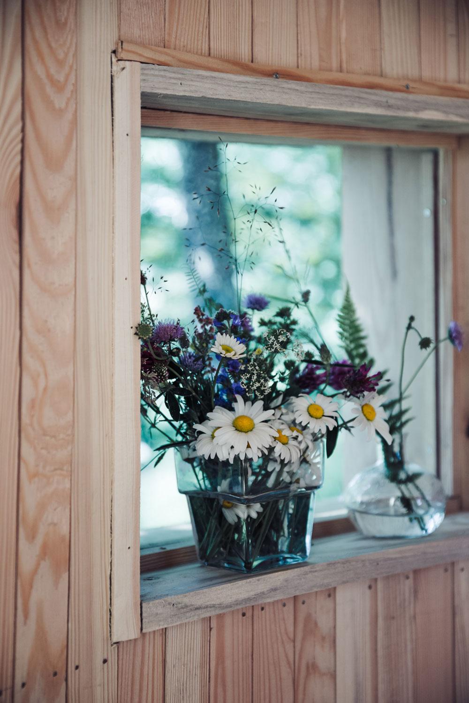 Vandring i Skåne: Naturområdet Hovdala - med overnatning i smukke birketræshelters