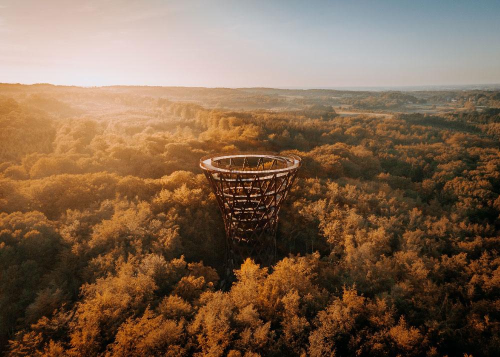 Skovtårnet fra luften