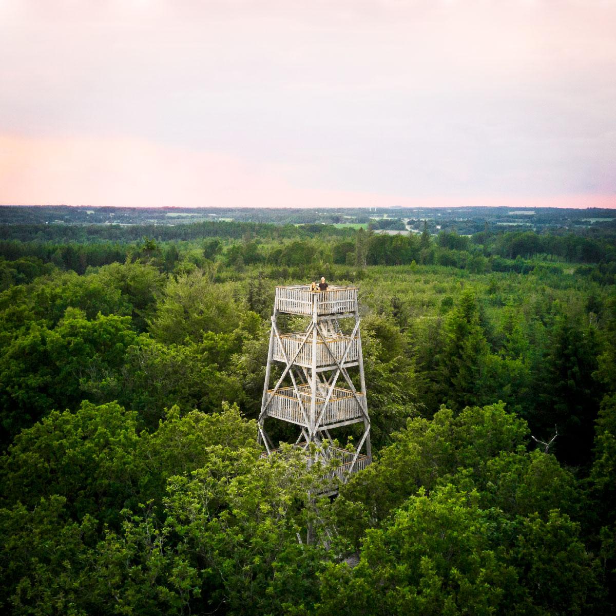 Fru Mettes Bjerg - udsigtstårn i Hundsbæk Plantage