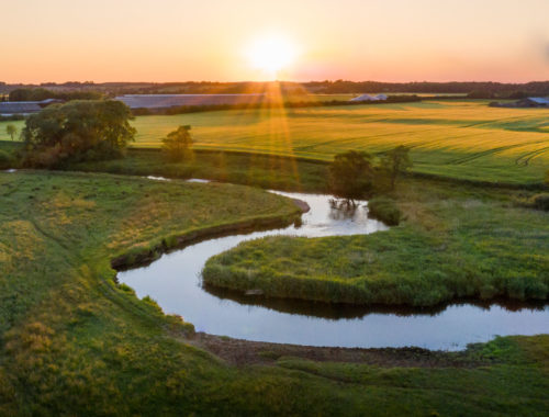 Kanotur på Kongeåen, badning i Jels Søbad og andre grønne oplevelser i Vejen-området