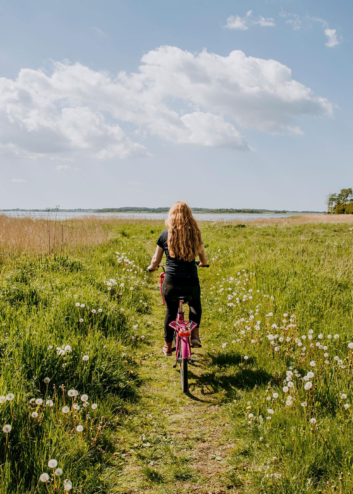Cykling på Fjordstien - Salvadparken