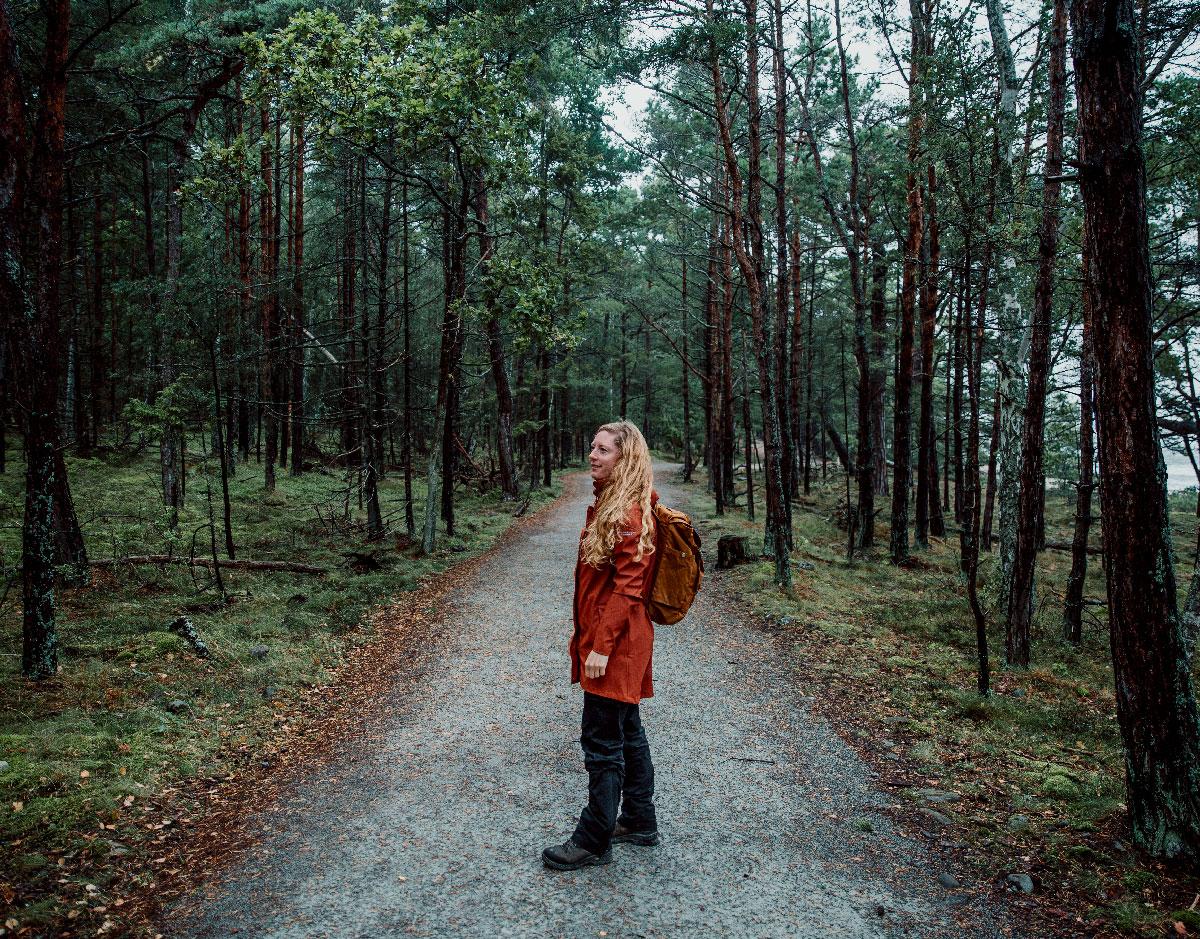 Trolleken i Trollskogen på Öland